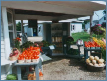 Fresh Veggies and Fruit - all for sale
